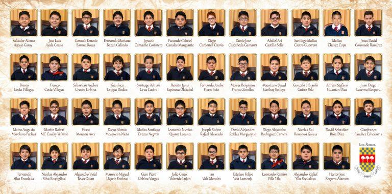 Alamos Hermano Tapa CONTRAPLACADA 20-3 x 41 MJ formato_03